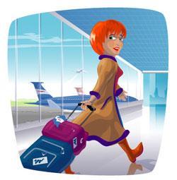 Air Travel Security