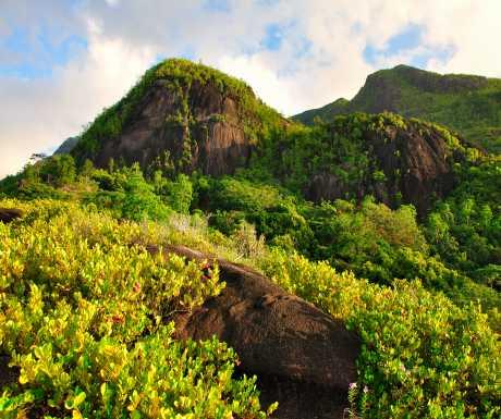 Anse Major Trail Seychelles