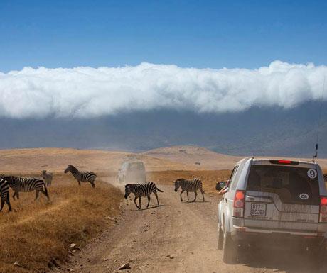 Land Rover safari