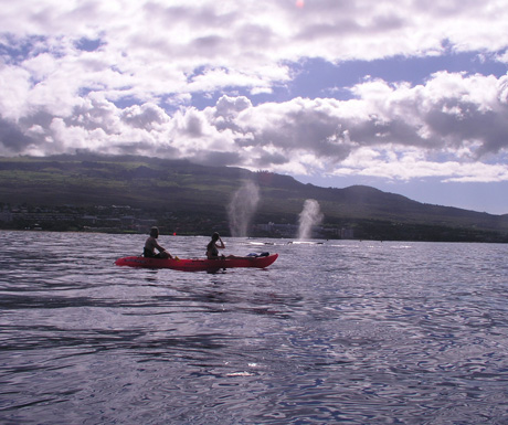 Makena kayaking