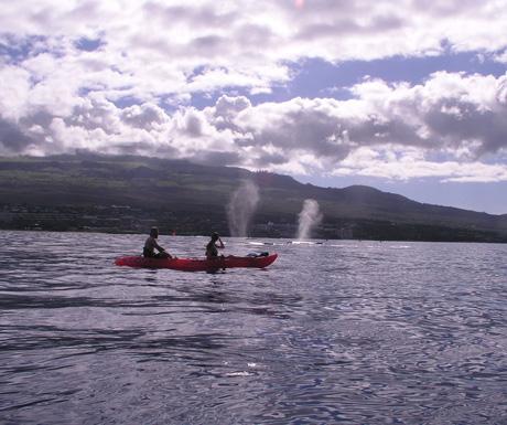 Makena kayaking