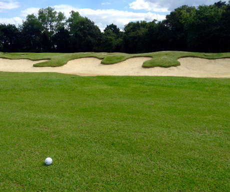 Golf during Stoke Park