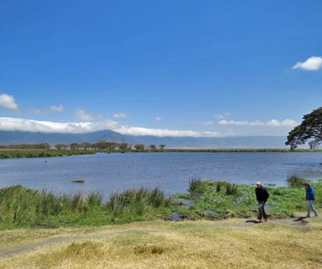 Hiking in Ngorongoro Crater