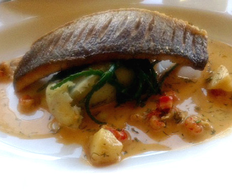 Sea drum with herb mash
