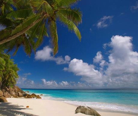 Fregate Island Private-460-385