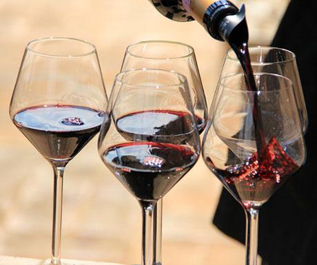 Wine Tasting Cruise Barcelona