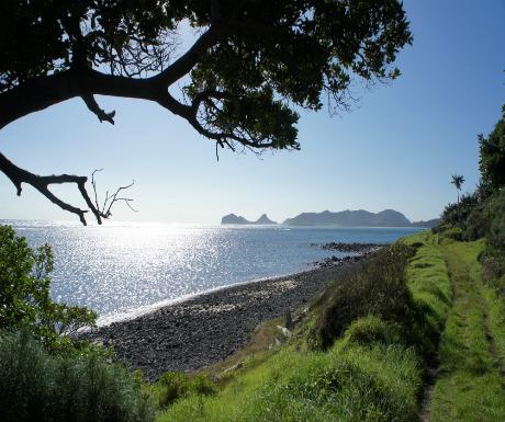 Walk to Little Island