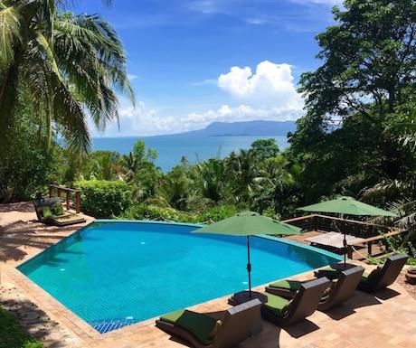 Villa des Palmes - pool
