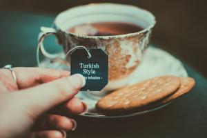 english to turksih translation